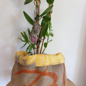 Cache pot en jute – sac de café Guatemala-